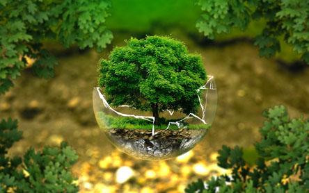 Qué es la responsabilidad ambiental de una empresa